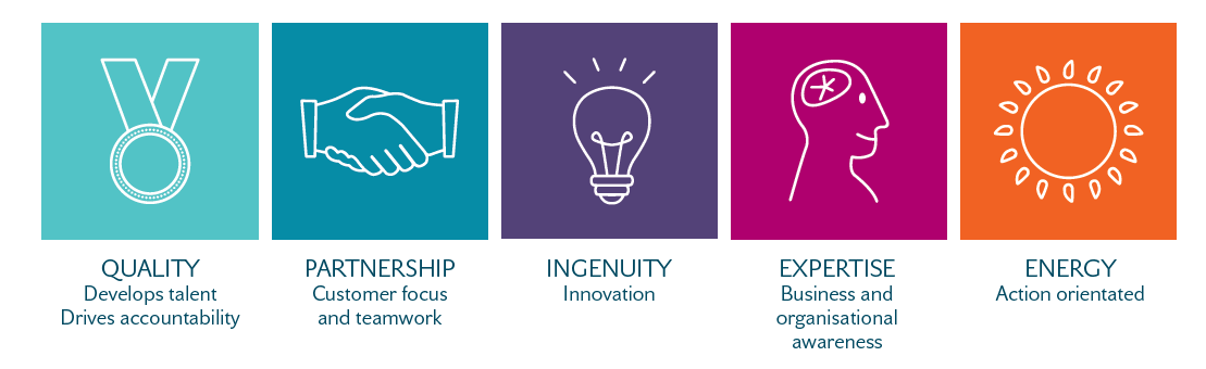 UDG Healthcare Values